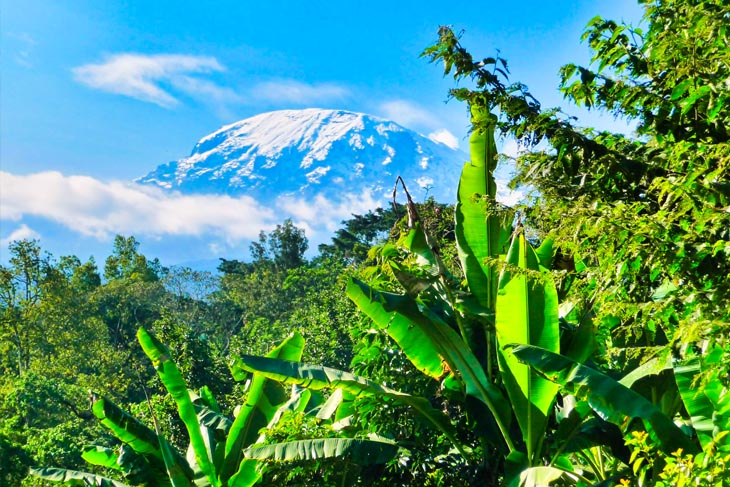 tanzania_kilimanjaro01