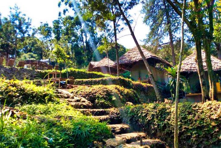 tanzania_kilimanjaro12